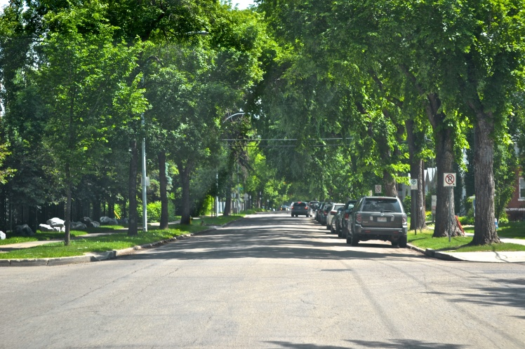 Typical downtown Edmonton residential street.