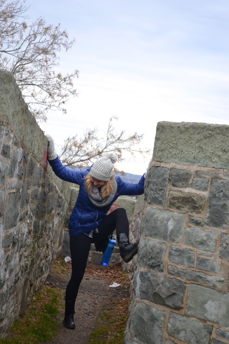 Climbing fortifications