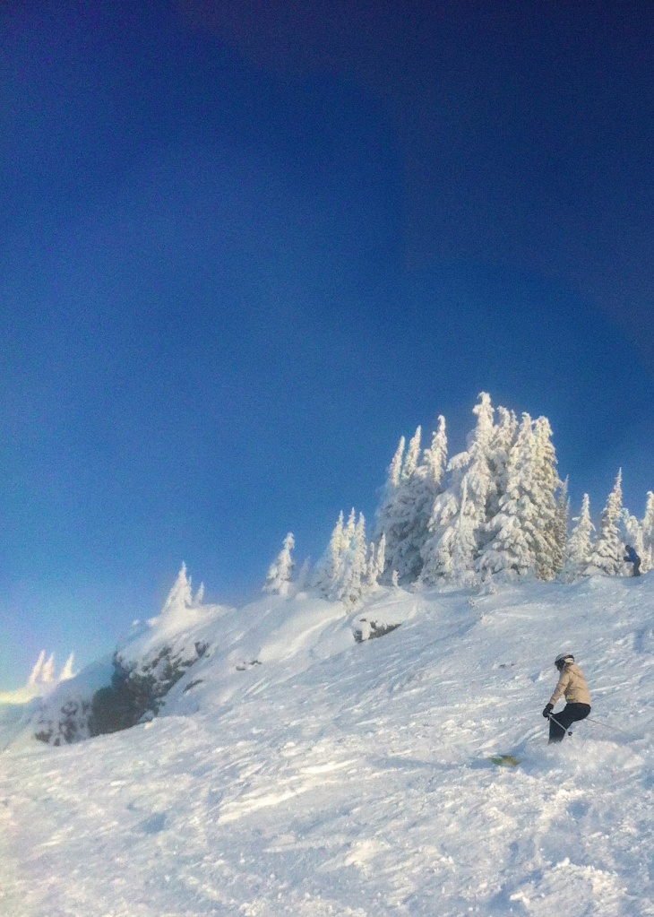 Skiing at Revelstoke; moguls; The Full-TimeTourist